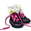 Daisy bouquet in sneakers - Stock Photo