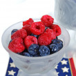 Blueberry and raspberry mix - Foto de Stock