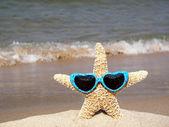 Starfish wearing sunglasses — Stock Photo