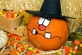 Halloween pumpkins with hat — Stock Photo