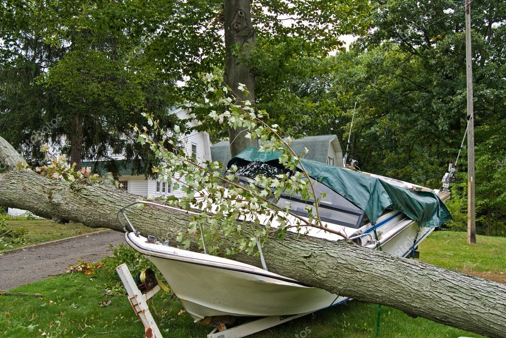 Tree crushing power boat after a storm. — Stock Photo #11476469