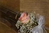 Violino d'epoca con rosa — Foto Stock