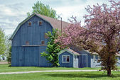 Blue barn in spring — Stockfoto