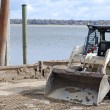 Bobcat on a dock — Stock Photo