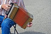Fisarmonica d'epoca — Foto Stock