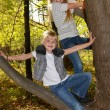 Girls in a tree — Stock Photo #11714078
