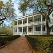 Southern Plantation - Stock Photo