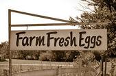 Old fashioned farm sign — Stock Photo