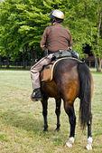 Police on horseback — Zdjęcie stockowe