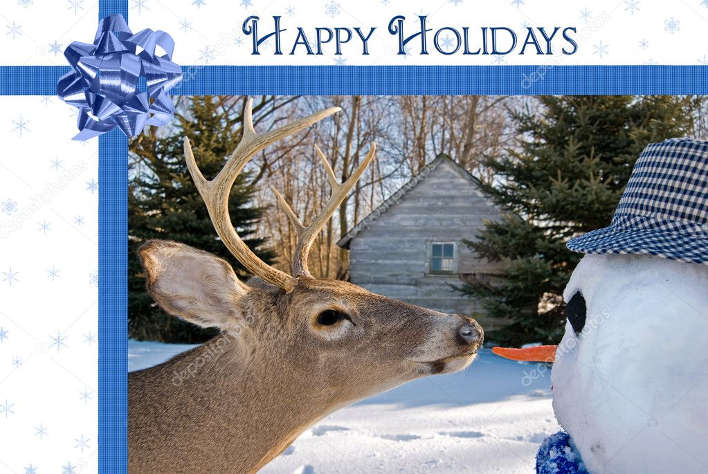 Big buck going for the snowman's carrot nose. — Stock Photo #11762493