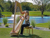 Young woman playing a harp — Stock Photo