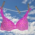 Pink bra hanging on clothesline — Stock Photo #11879534