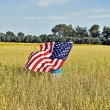 Flag in wheat field - Stock Photo