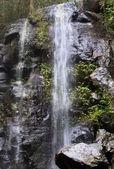 Waterfalls Bunya mountains Queensland — Stock Photo