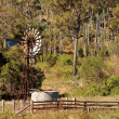 Australian countryside with gumtrees and windmill — Stock Photo