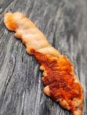 Orange fungus on wood — Stock Photo