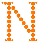Letter - N made from orange — Stock Vector