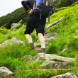 Stock Photo: View of trekker with backpack walking up hill