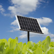 Green leaves with solar panel and blue sky with clouds - a renewable energy source — Stock Photo