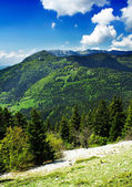 Mountains landscape with green grass, trees and clouds. Alps in eastern France — Stock Photo
