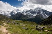 Summer Footpath in the Alps — Stock Photo