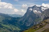 Bernese Alps in Summer - Viewed from Jungfraujoch — Stock Photo
