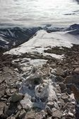 Frozen Skeleton of a Dead Reindeer in Arctic Mountains — Stockfoto