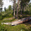 Old Wooden Boat in the Forest — Stock Photo
