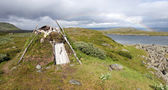 Original Lappish Shelter in Swedish Tundra — Foto Stock