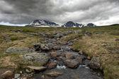 Erimiş suyun akışı ile kaya — Stok fotoğraf