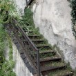 Old Stairway Covered by Greenery — Stock Photo #11874765