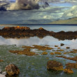 Rocky Seashore of Scotland in Stormy Weather — Foto de Stock