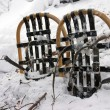 Stock Photo: Vintage Snowshoes in Snow