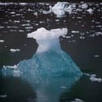 Glacier ice in Resurrection Bay — Stock Photo