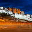 Potala Palace at night - Stock Photo