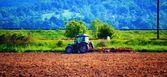 Agriculture — Foto de Stock