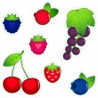 Stock Vector: Berries icon set