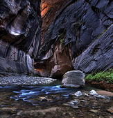 Zion National Park. — Stock Photo