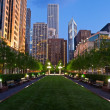 City of Chicago — Foto de Stock