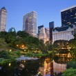 Central Park and Manhattan Skyline. - Stock Photo