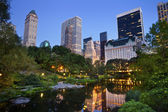 Central park und manhattan-skyline. — Stockfoto