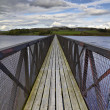 Footbridge over lake — Stock Photo #11063850