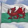 Welsh Flag — Stock Photo #11063968