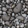 Basalt Pebbles — Stock Photo #11064583