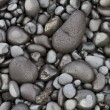 Stock Photo: Basalt Pebbles