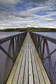 Footbridge over a lake — Stock Photo