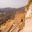 Amber Fort, India — Stock Photo #11072685