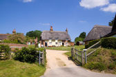 Dorset thatched cottages — Stockfoto