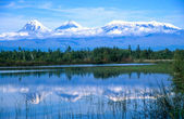 Kamchatkan volcanoes mirrored in a lake — Stock Photo