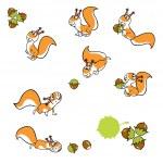 ������, ������: Squirrels with hazelnuts